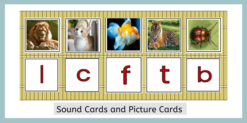 Montessori sound cards and picture cards