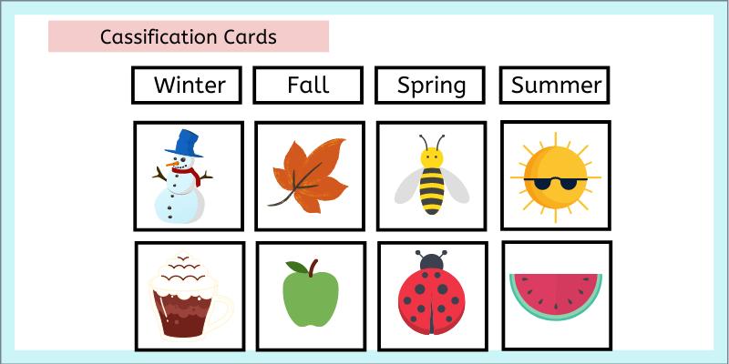 Montessori classification cards for winer