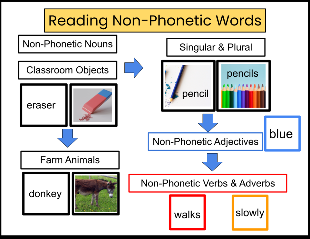Reading non-phonetic nouns, adjectives, verbs and adverbs