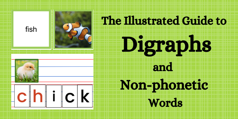 How to teach digraphs and non-phonetic words, Montessori way